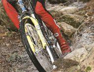 Mountain Bike dos