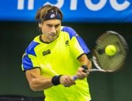 Grigor Dimitrov arrebata la final de Estocolmo a David Ferrer