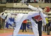 Lluvia de medallas en el Open de España de taekwondo