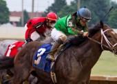 La relación entre el jinete y el caballo, clave para medir el rendimiento del animal