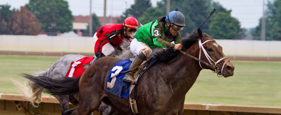 La-relacion-entre-el-jinete-y-el-caballo-clave-para-medir-el-rendimiento-del-animal_image_380