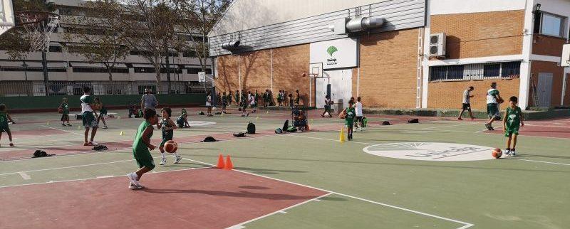 Nuevo proyecto baloncesto adaptado en Málaga. Fuente: EBG