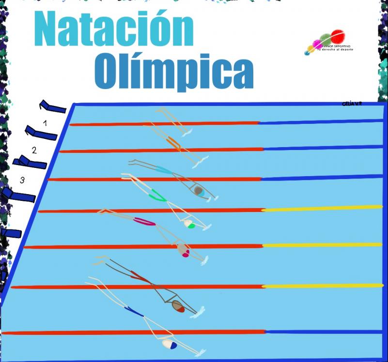 🏊Natación olímpica