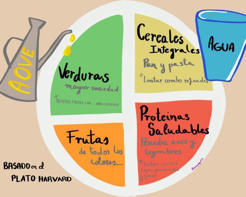 Plato Harvard. Fuente: Avance Deportivo